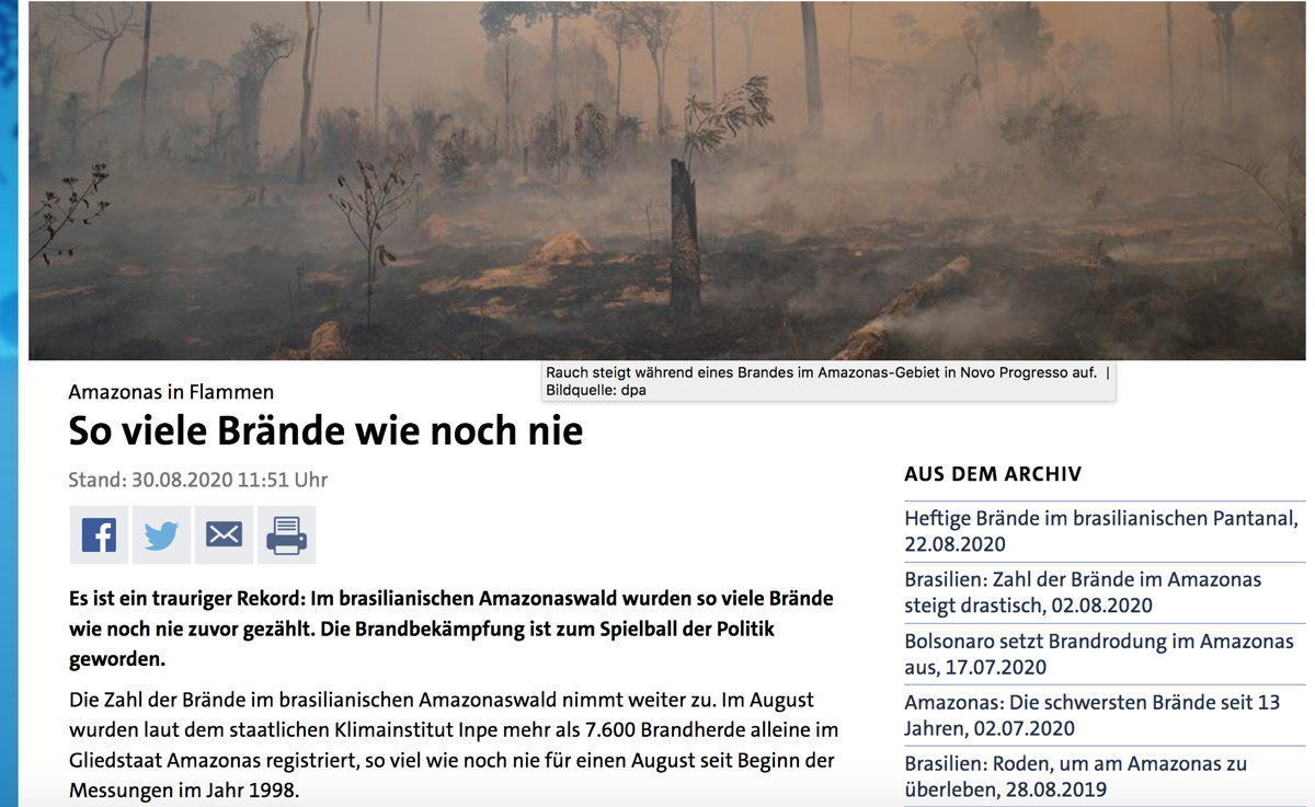 Artikel auf Tagesschau.de vom 30.8.2020