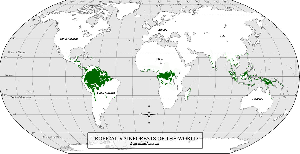 tropical rainforest map